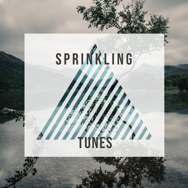 # 1 Album: Sprinkling Tunes
