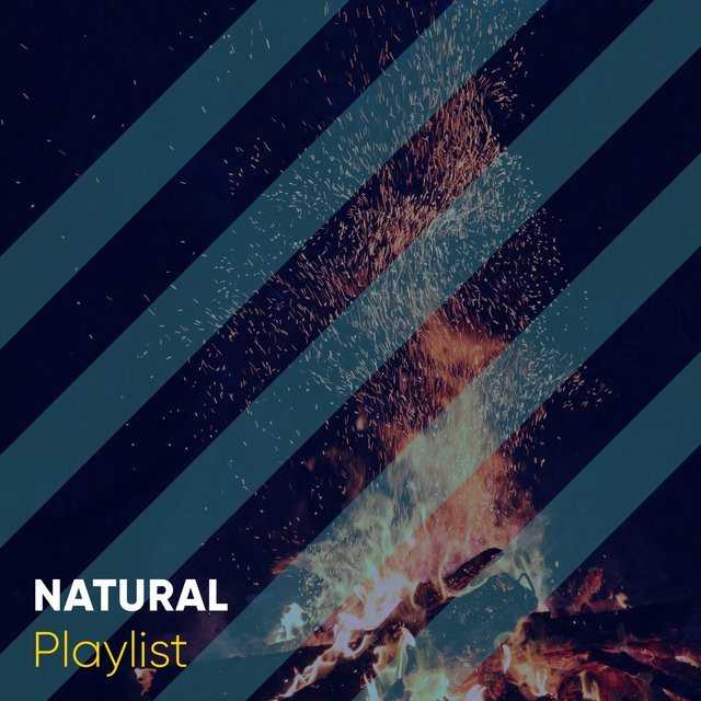 Quiet Natural Backyard Playlist