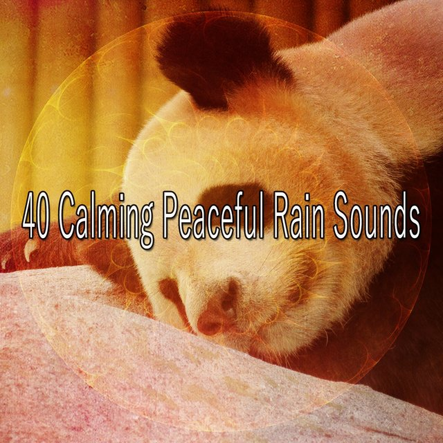 40 Calming Peaceful Rain Sounds