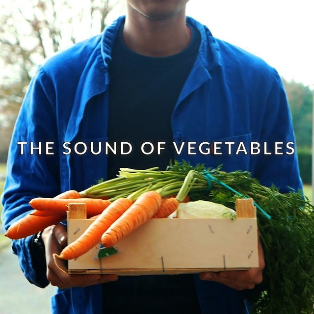 The Sound of Vegetables