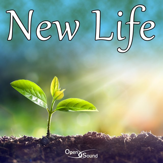 New Life (Music for Movie)