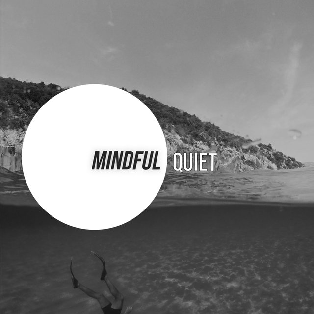 # Mindful Quiet