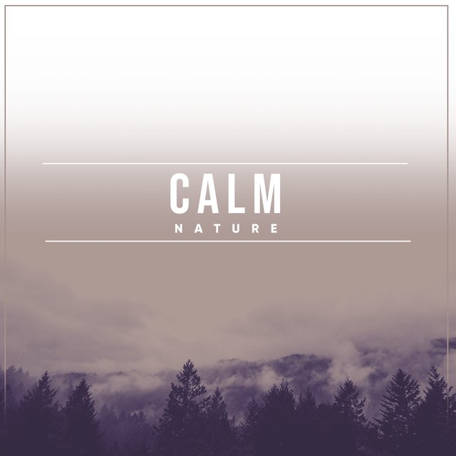 # 1 Album: Calm Nature