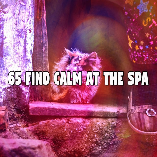 65 Find Calm at the Spa