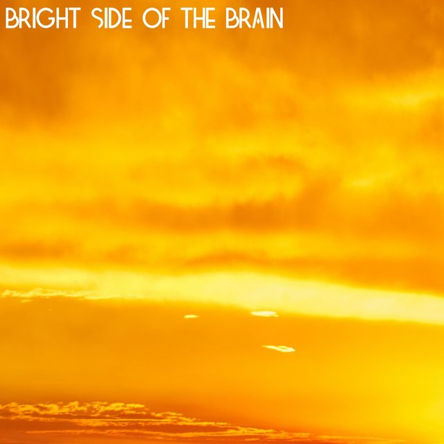 Bright Side of the Brain