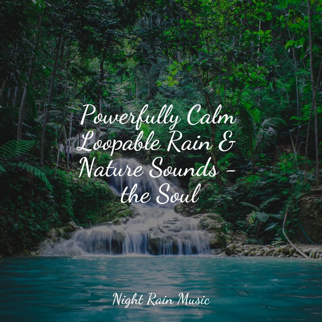 Powerfully Calm Loopable Rain & Nature Sounds - the Soul