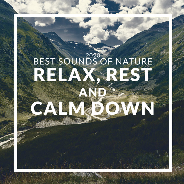 2020 Best Sounds of Nature: Relax, Rest and Calm Down