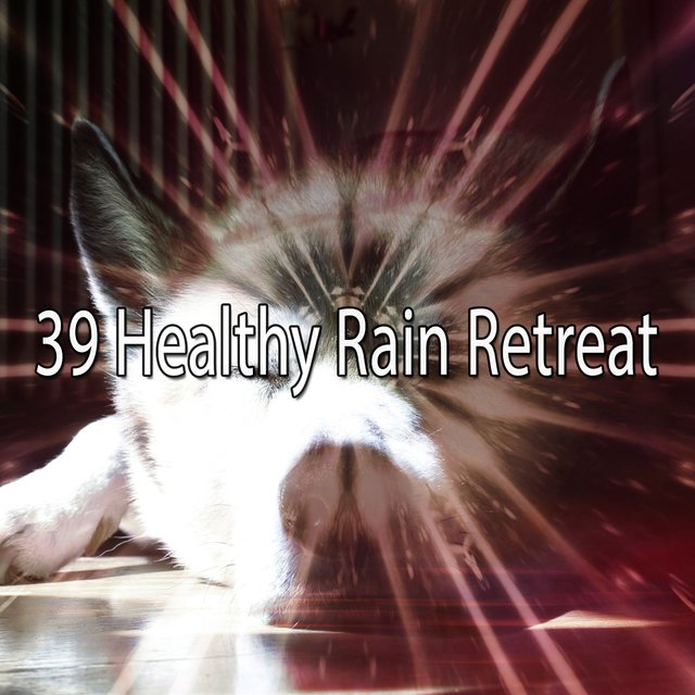 39 Healthy Rain Retreat