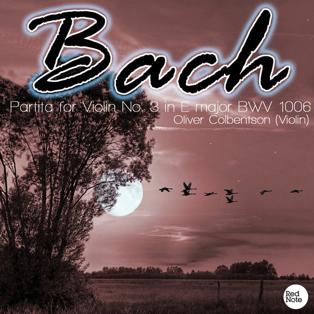 Bach JS: Partita for Violin No. 3 in E major BWV 1006