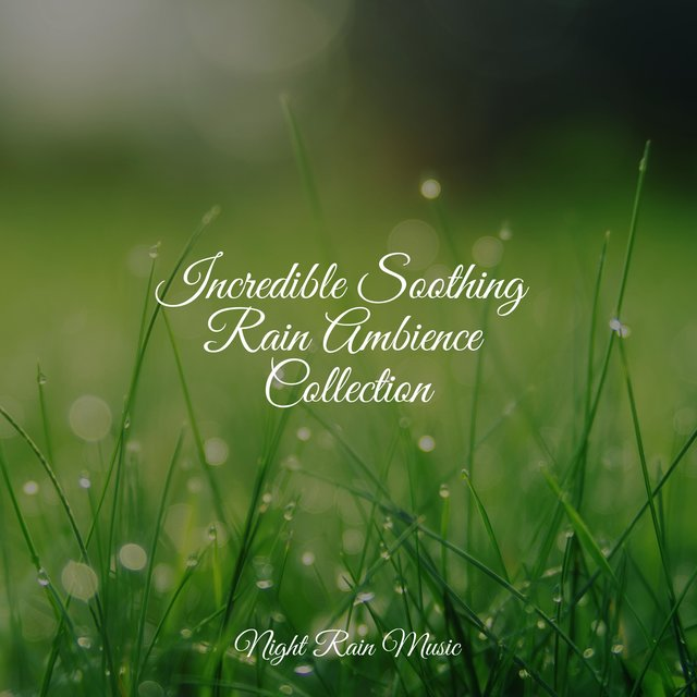 Incredible Soothing Rain Ambience Collection
