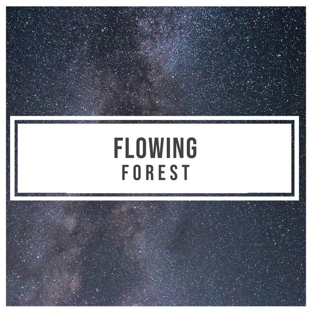 Flowing Natural Forest Harmonies
