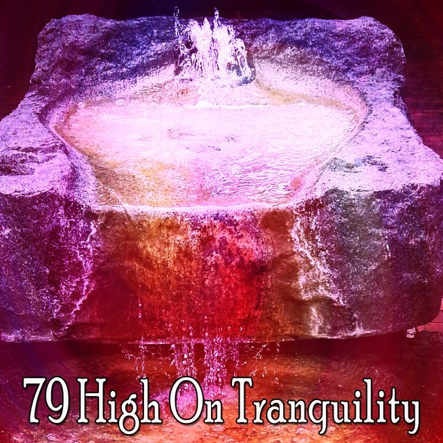 79 High on Tranquility