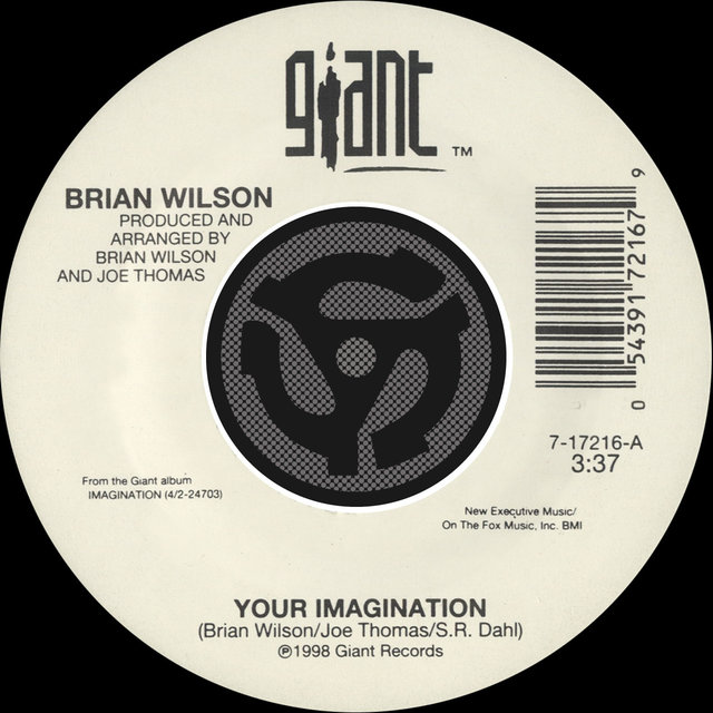 Your Imagination / Your Imagination (A Cappella) [45 Version]