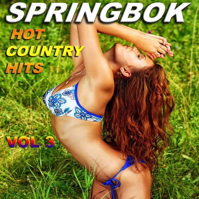 Springbok Country Hits - 70's