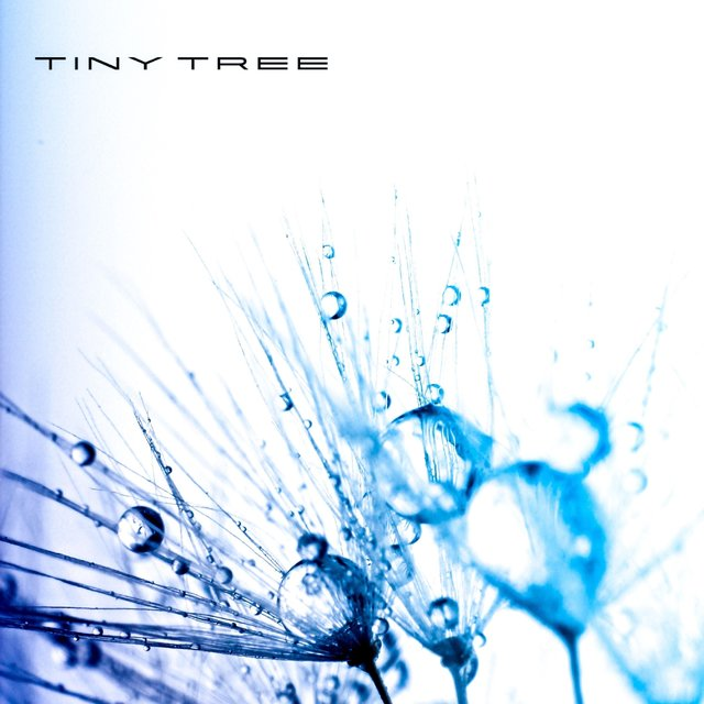 Cover art for album Embolism by Tiny Tree