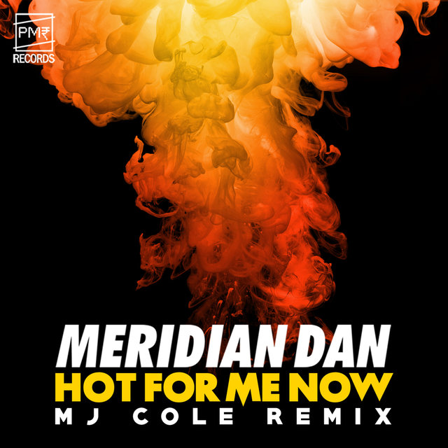 Hot For Me Now (MJ Cole Remix)