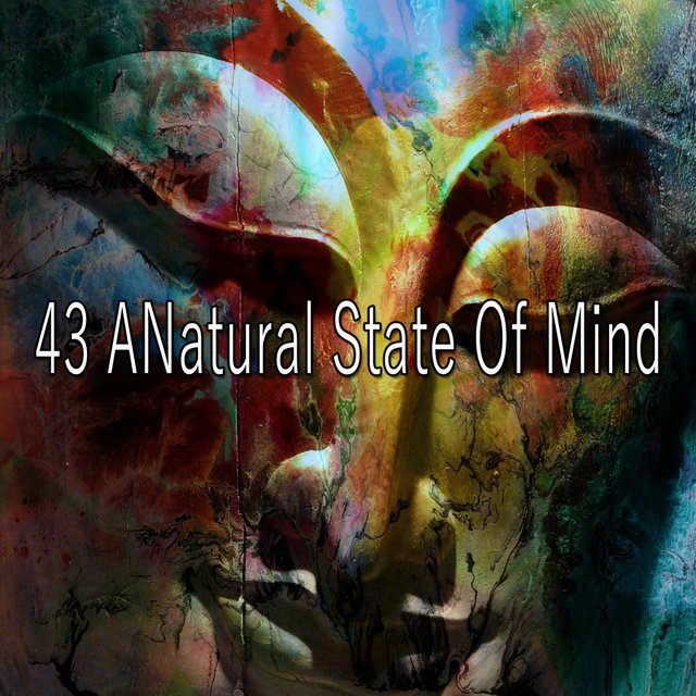 43 A Natural State of Mind