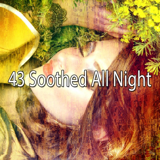 43 Soothed All Night