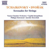 Serenade for Strings, Op. 22, B. 52: I. Moderato