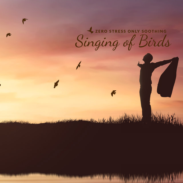 Zero Stress Only Soothing Singing of Birds
