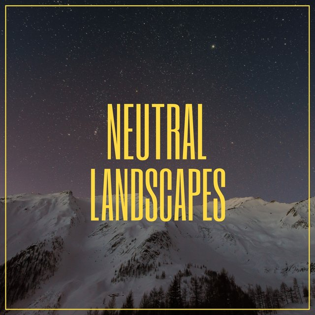 # Neutral Landscapes