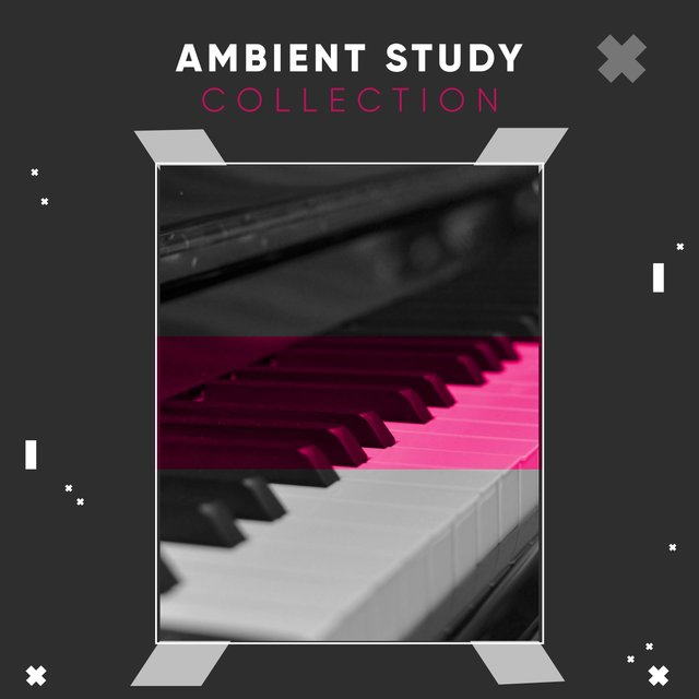 Ambient Study Therapy Collection
