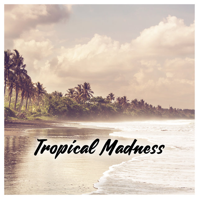 Tropical Madness – Electro Summer Mood, Top 15 Chillout Summer Time Hits in 2020 Tropical Holidays Chill Music