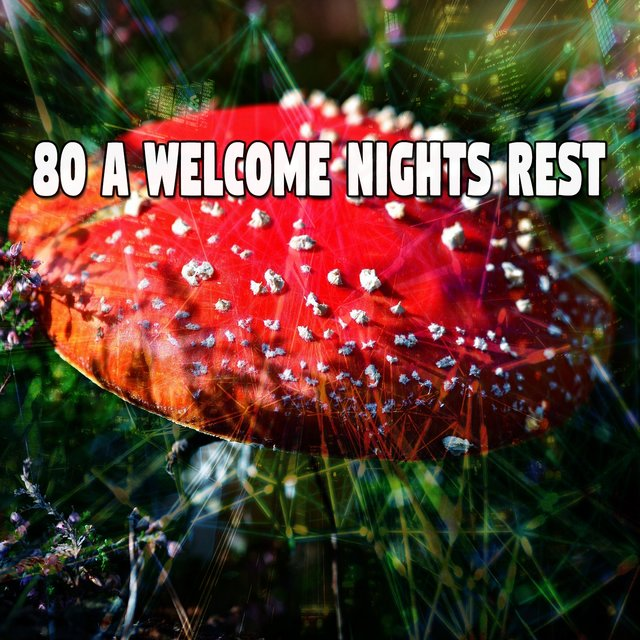 80 A Welcome Nights Rest