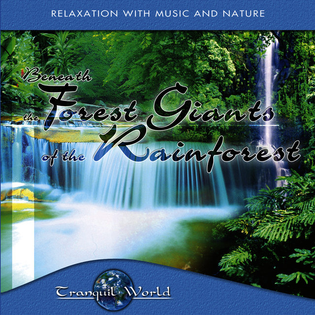 Tranquil World - Under The Forest Giant Of The Rainforest