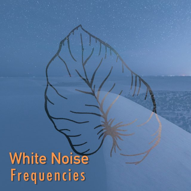 # 1 Album: White Noise Frequencies