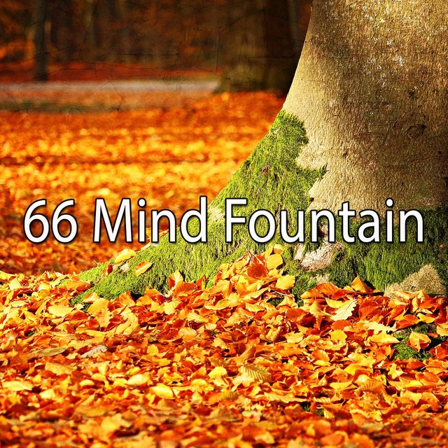 66 Mind Fountain