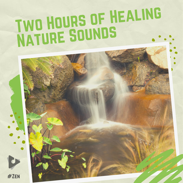 Two Hours of Healing Nature Sounds