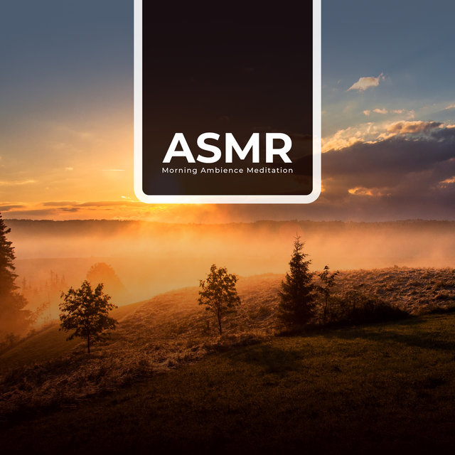 ASMR Morning Ambience Meditation - Nature Sounds, Relaxing Music, Calming Music, Healing Music