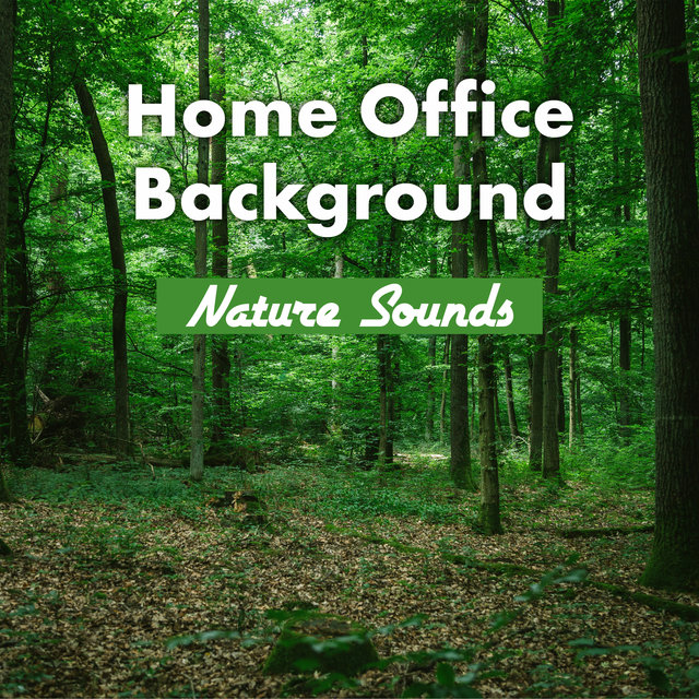 Home Office Background: Nature Sounds