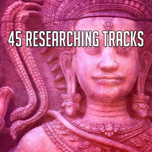 45 Researching Tracks