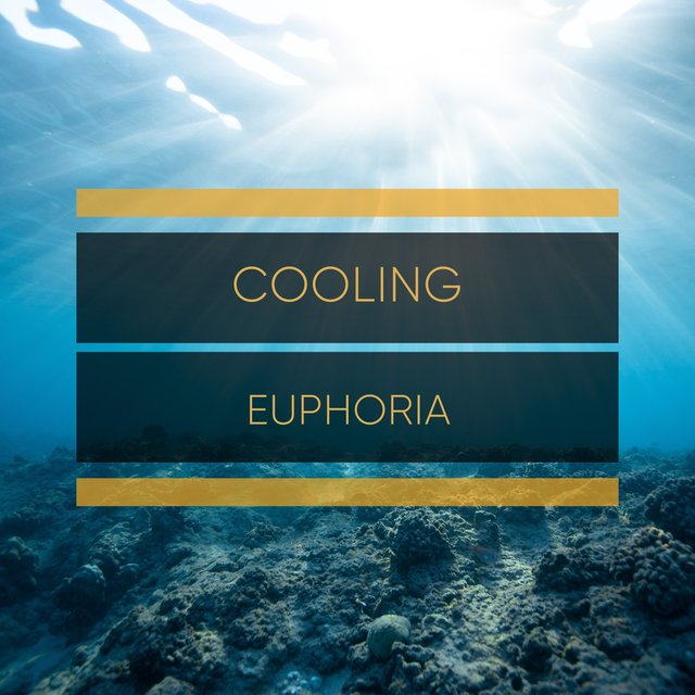 # 1 Album: Cooling Euphoria