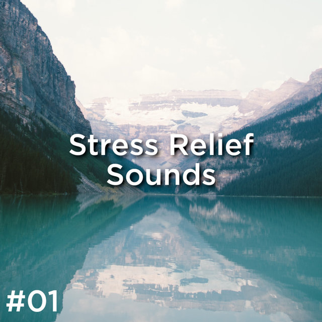 #01 Stress Relief Sounds