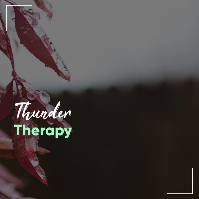 Relaxing Thunder Relief Therapy