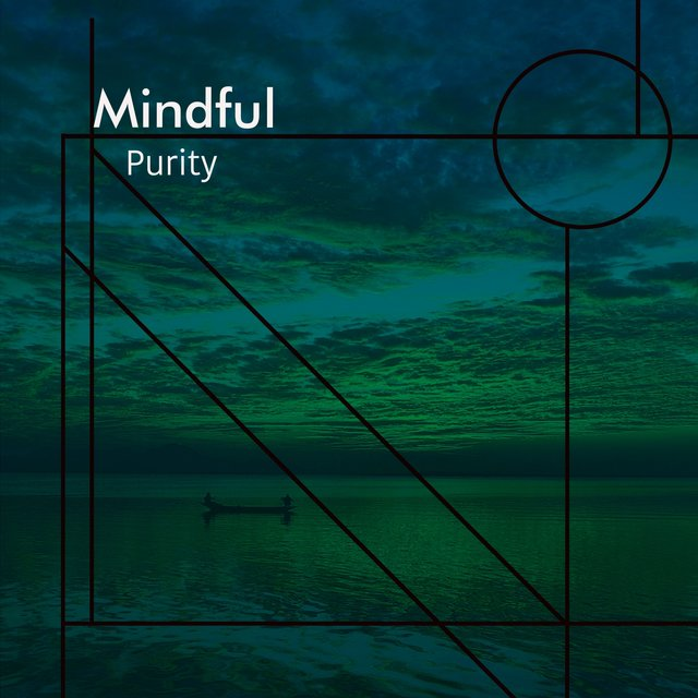 # 1 A 2019 Album: Mindful Purity