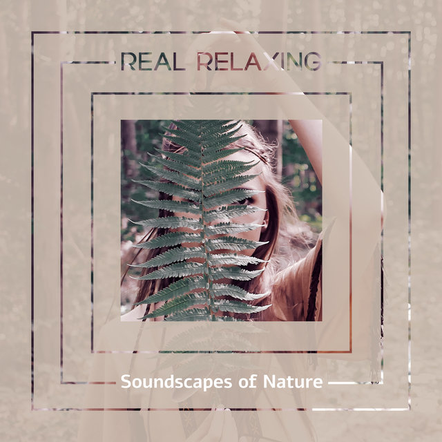 Real Relaxing Soundscapes of Nature