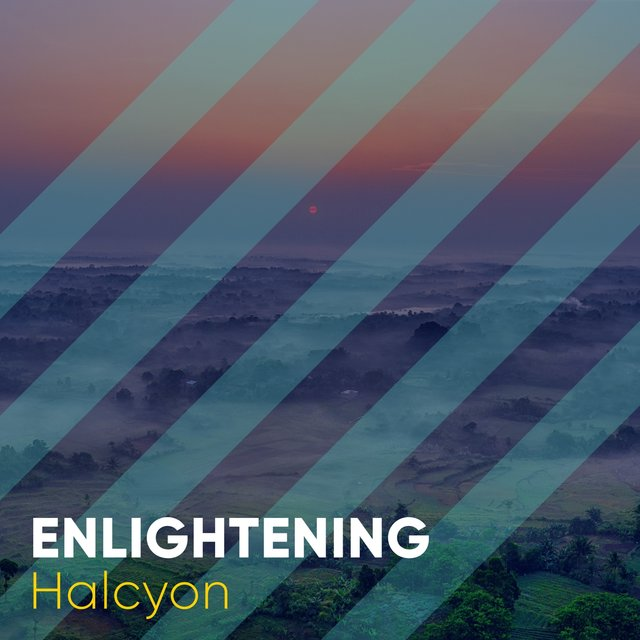 # 1 Album: Enlightening Halcyon