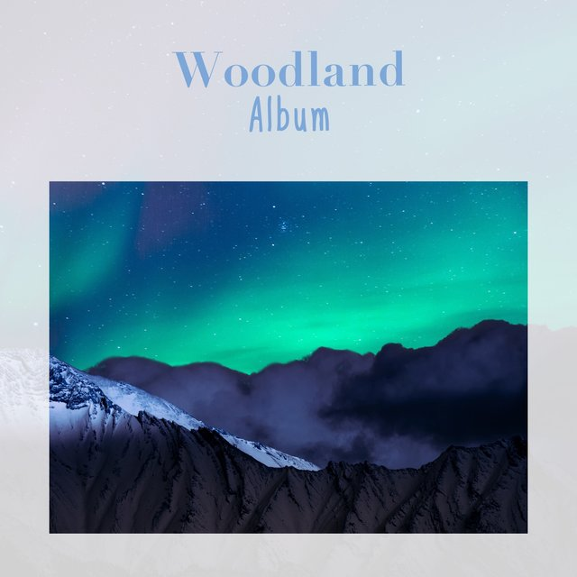 Soothing Natural Woodland Album