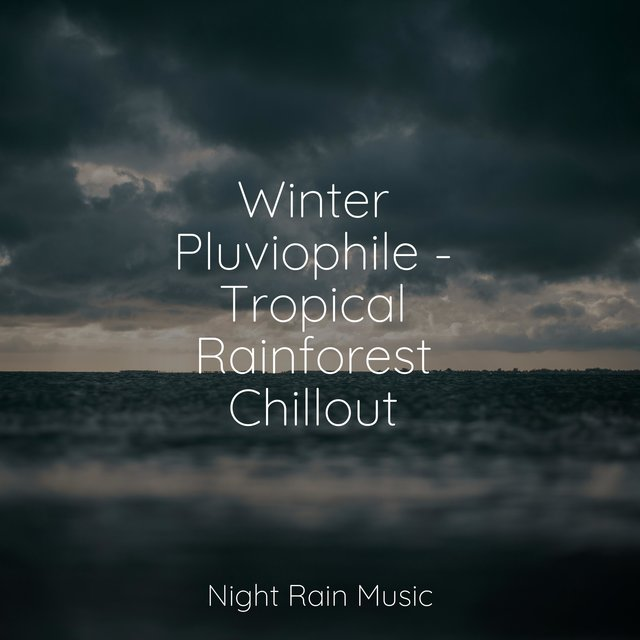 Winter Pluviophile - Tropical Rainforest Chillout