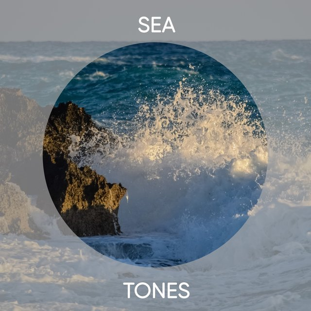 Pure Sea Tones