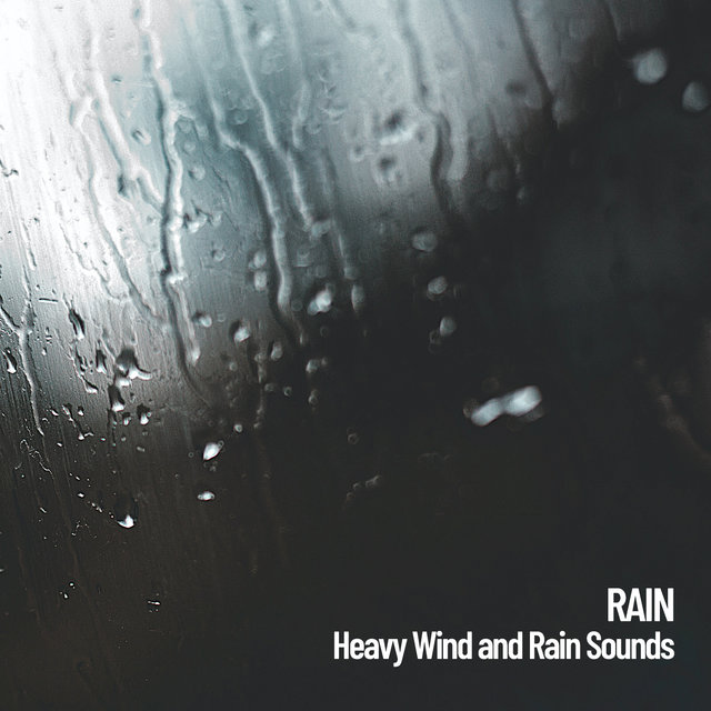 Rain: Heavy Wind and Rain Sounds