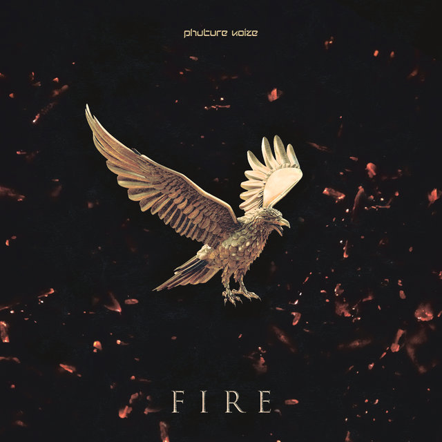 Fire (Radio Edit)