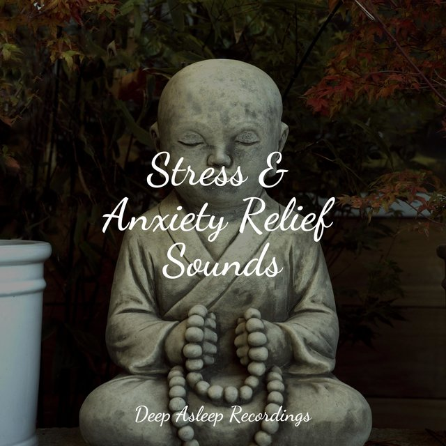 Stress & Anxiety Relief Sounds
