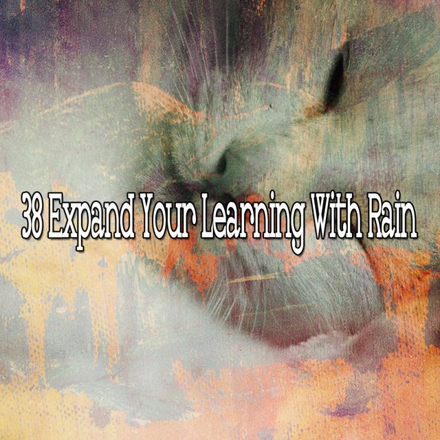 38 Expand Your Learning with Rain