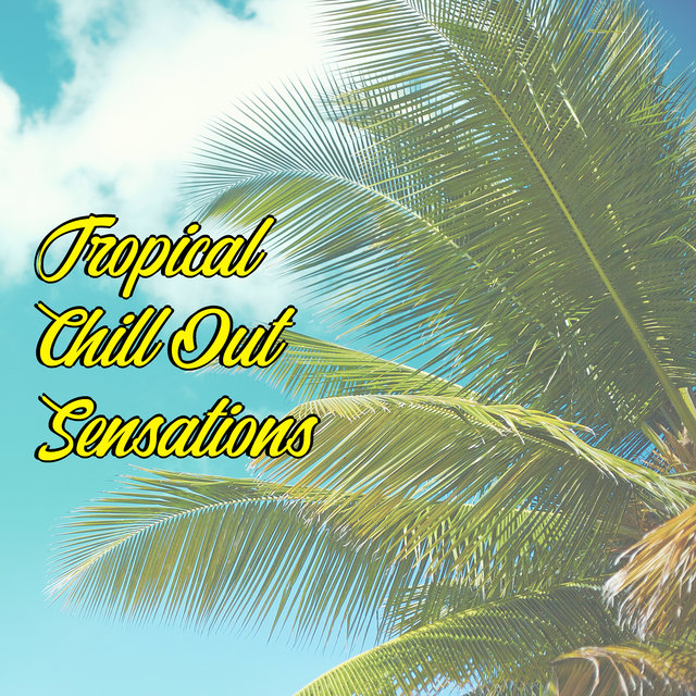 Tropical Chill Out Sensations: Compilation of Best 2020 Music for Total Relaxation, Summer Hits, Sunny Atmosphere, Deep Relaxing Beats, Holiday Vibes, Beach Music, Lounge Chill