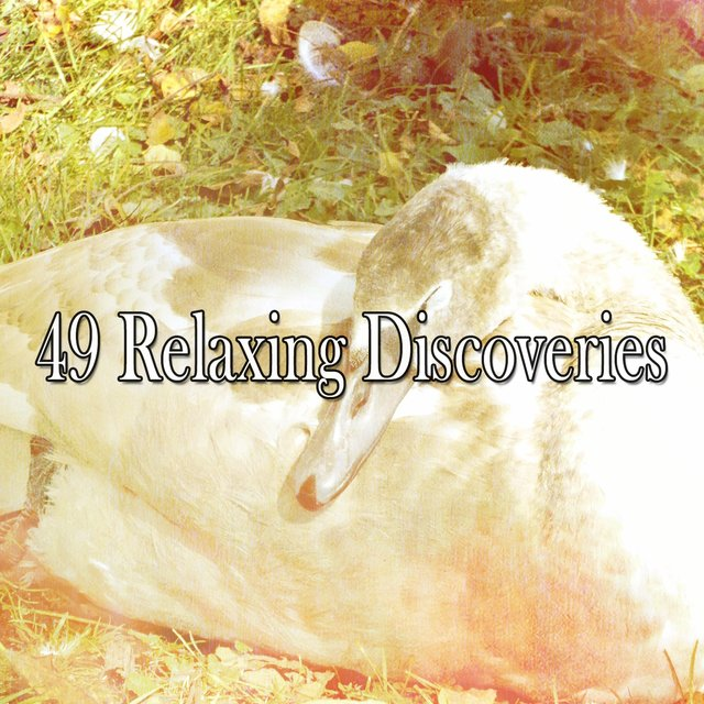 49 Relaxing Discoveries